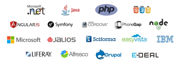 Microsoft .net, JAVA, PHP, HTML5, CSS3, JavaScript, AngularJS, Symfony, Apache Cordova, PhoneGap, node.js, Microsoft, Jalios, Sciforma, EasyVista, IBM, Liferay, Alfresco, Drupal, E-DEAL